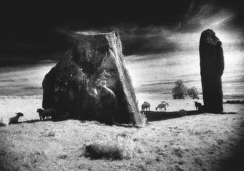 Standing Stones, Avebury, Wiltshire (MA-SS-708)